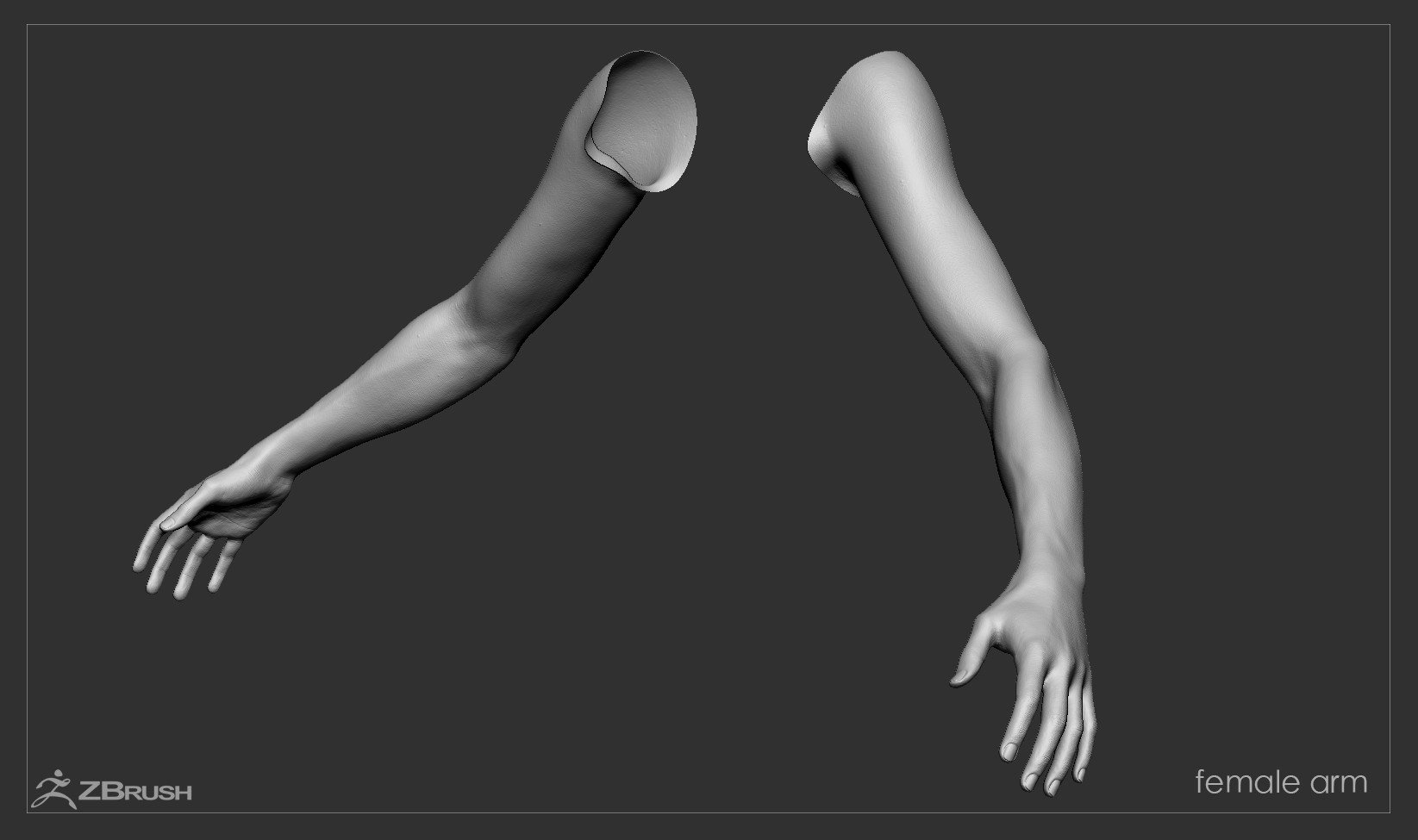 Firstpersonarms zbrush 02