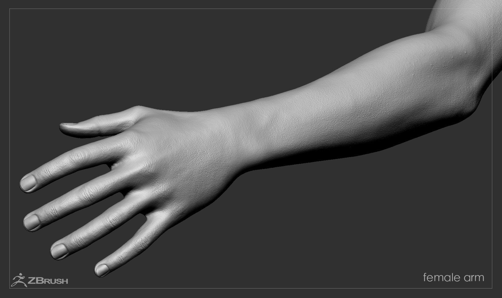 Firstpersonarms zbrush 04
