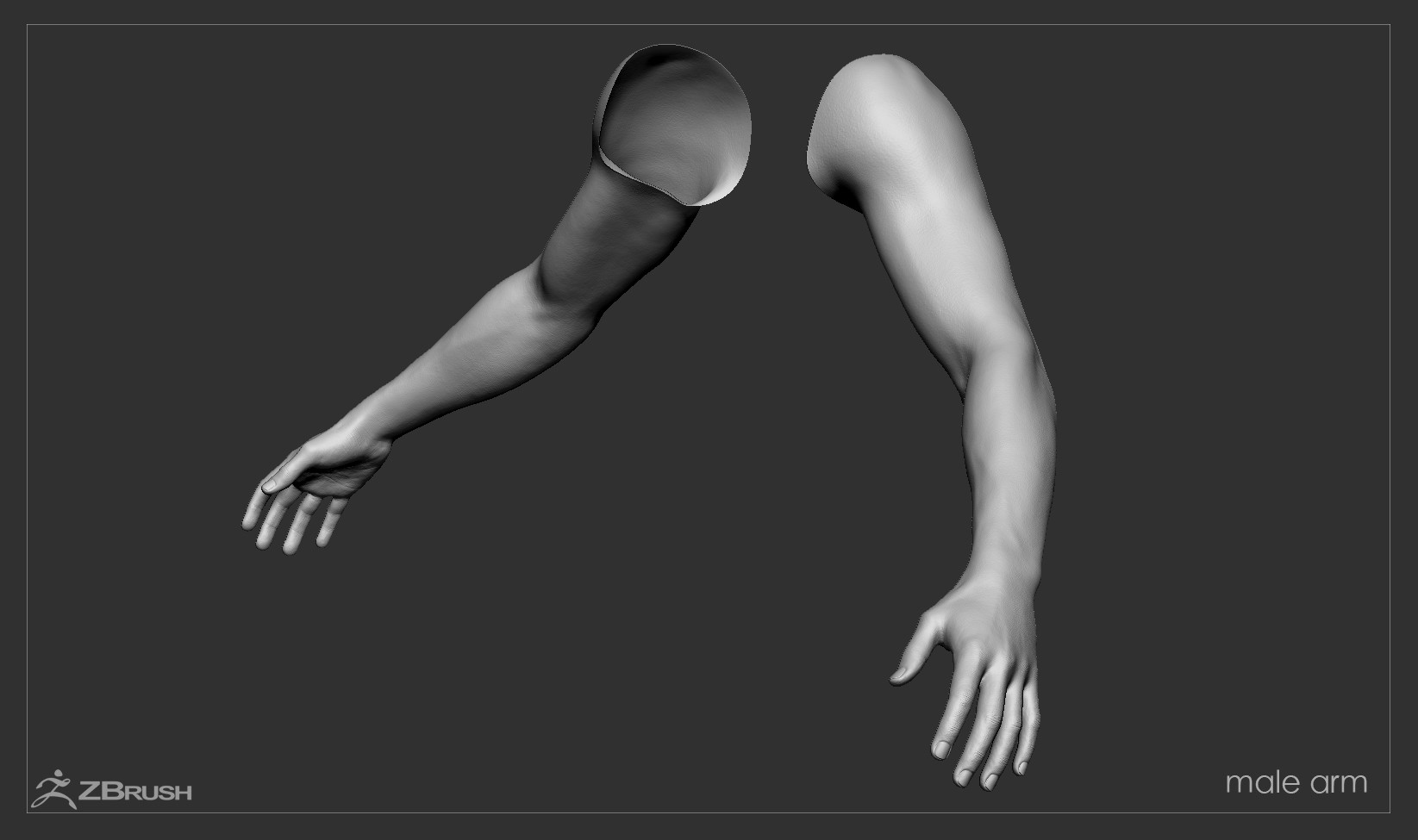 Firstpersonarms zbrush 10