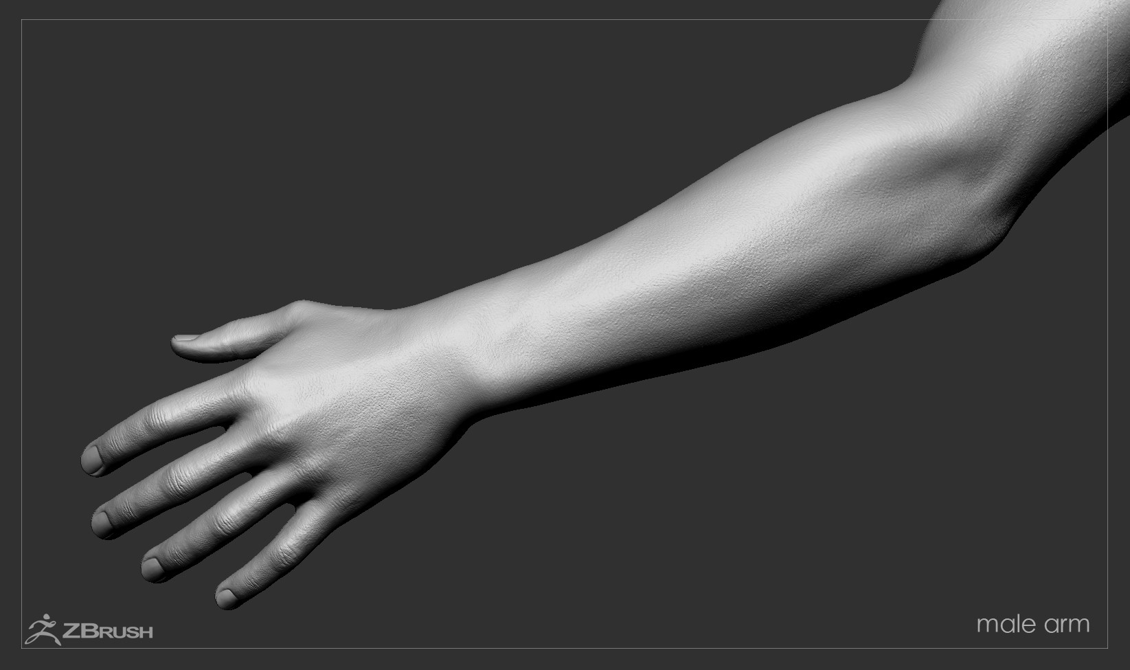 Firstpersonarms zbrush 12