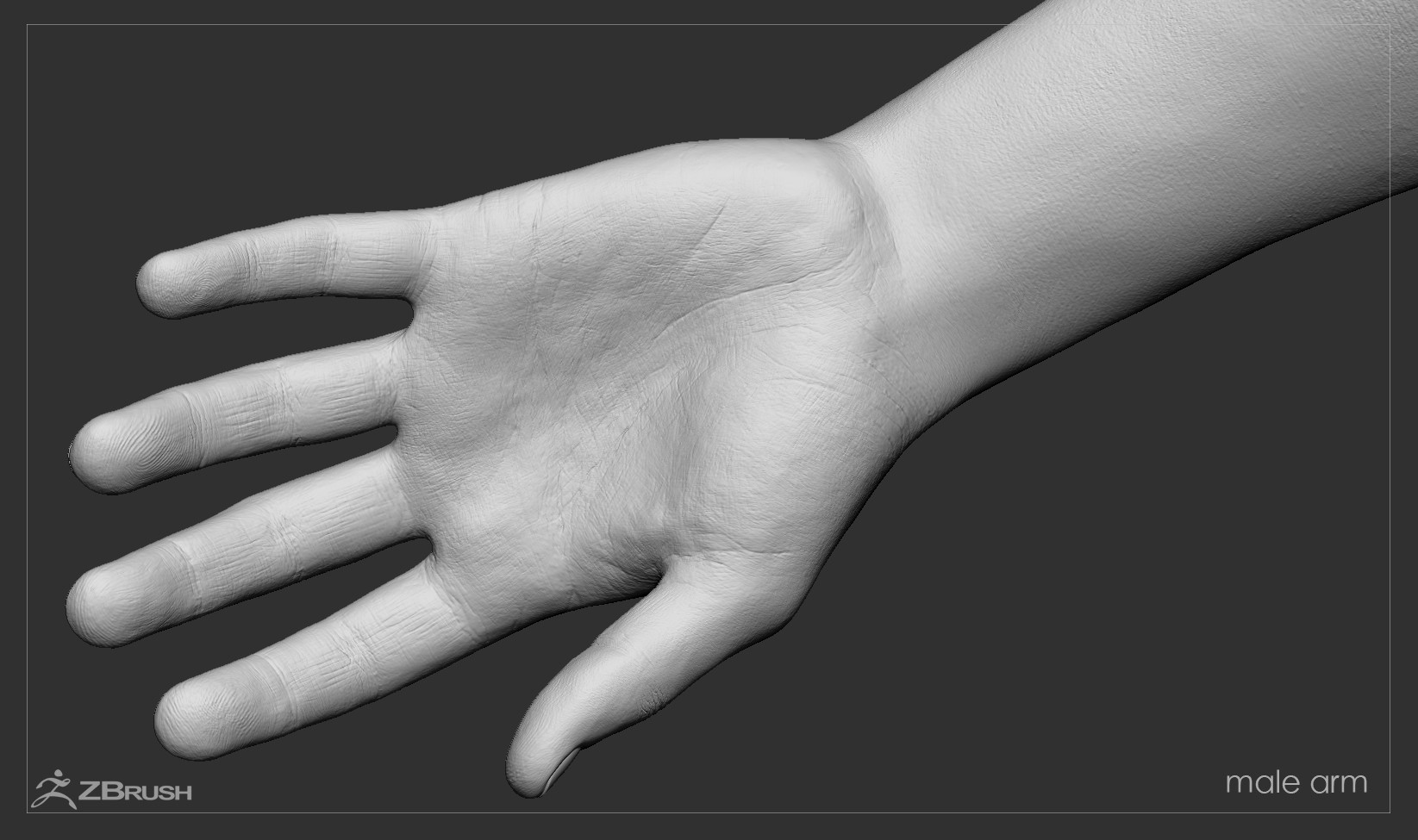 Firstpersonarms zbrush 16