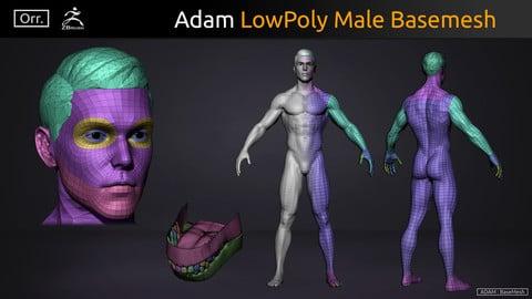 Male BaseMesh - LowPoly