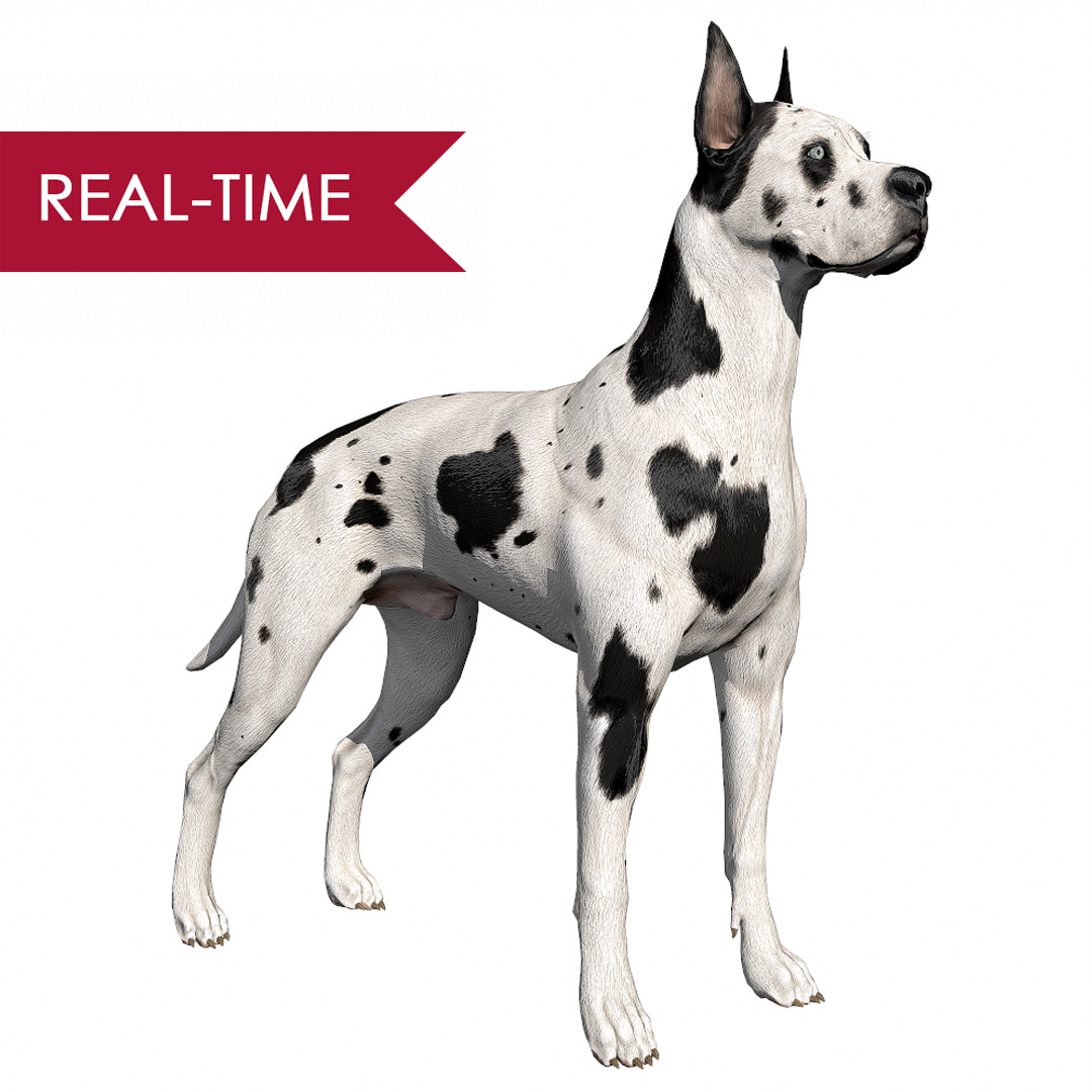 Greatdane realtime