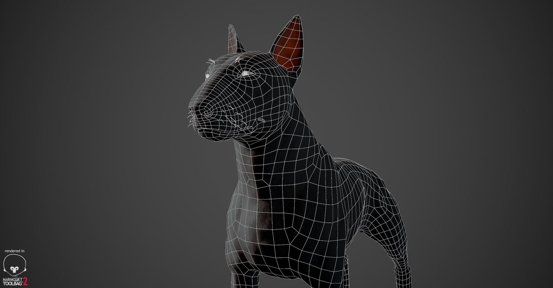 Bullterrier wireframe 04