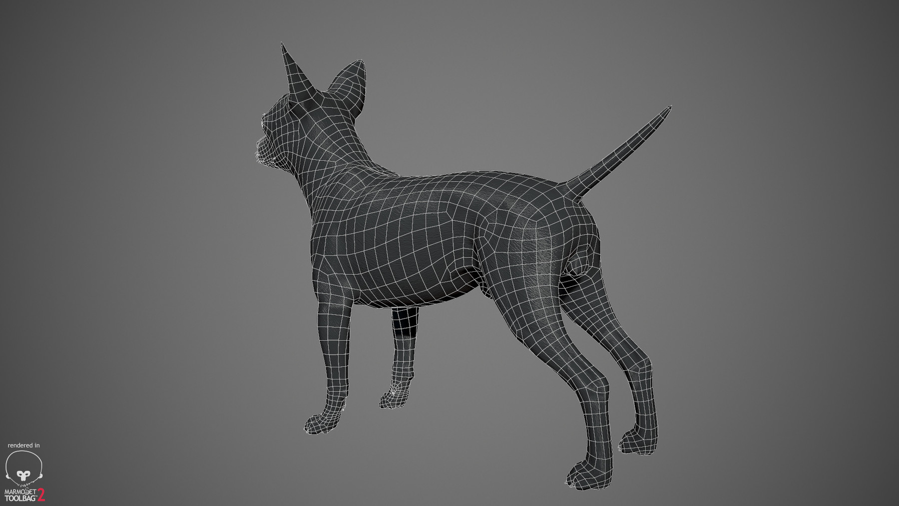 Chihuahua by alexlashko wireframe 02