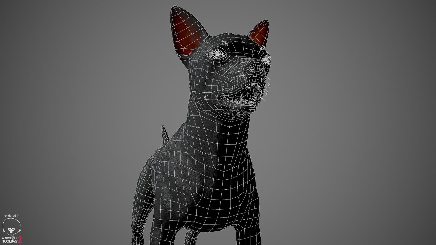 Chihuahua by alexlashko wireframe 04