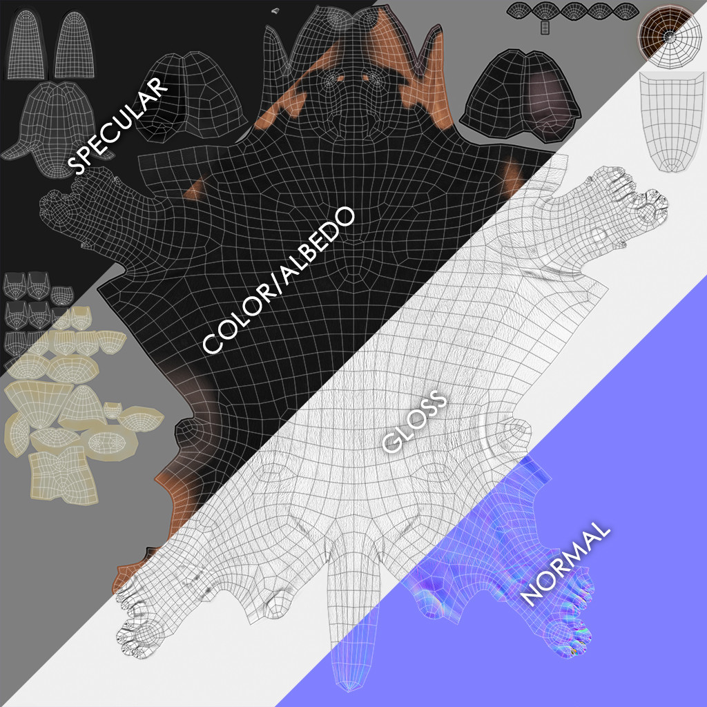 Dachshund maps breakdown