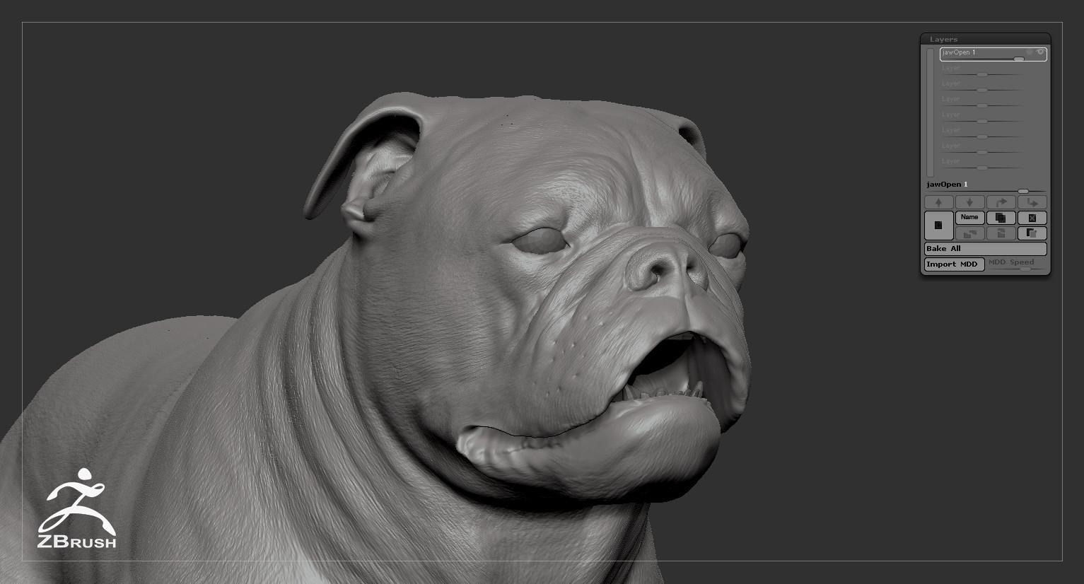 Englishbulldog by alexlashko zbrush 07