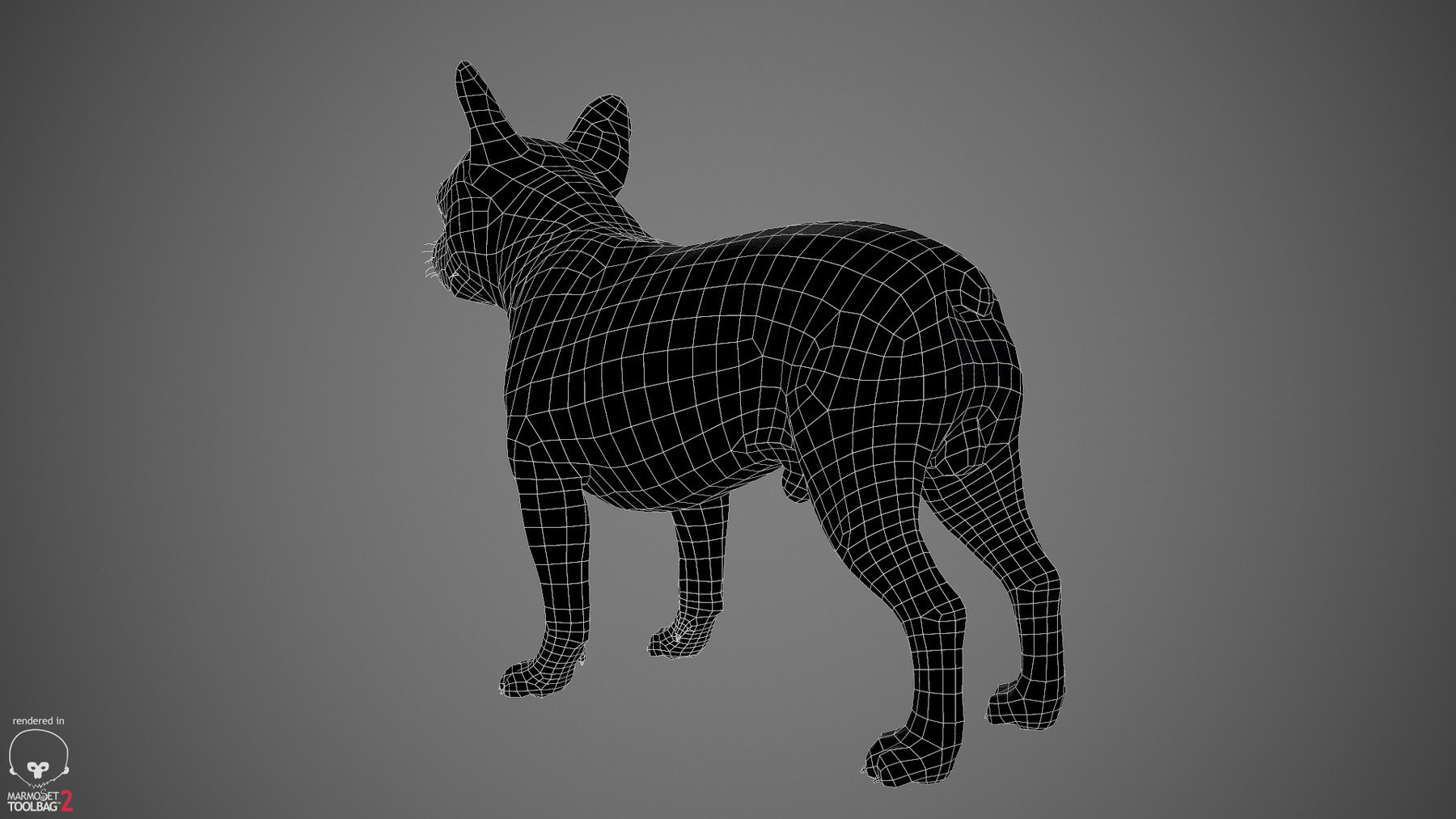 Frenchbulldog by alexlashko wireframe 02