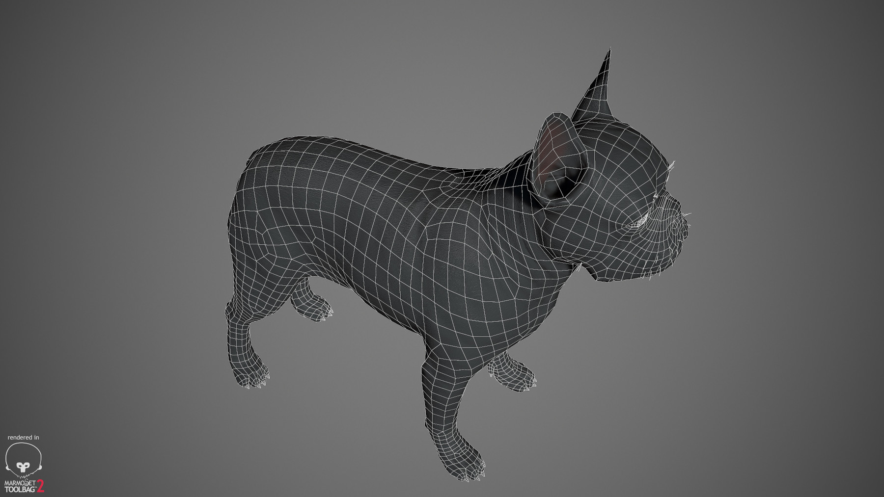 Frenchbulldog by alexlashko wireframe 04