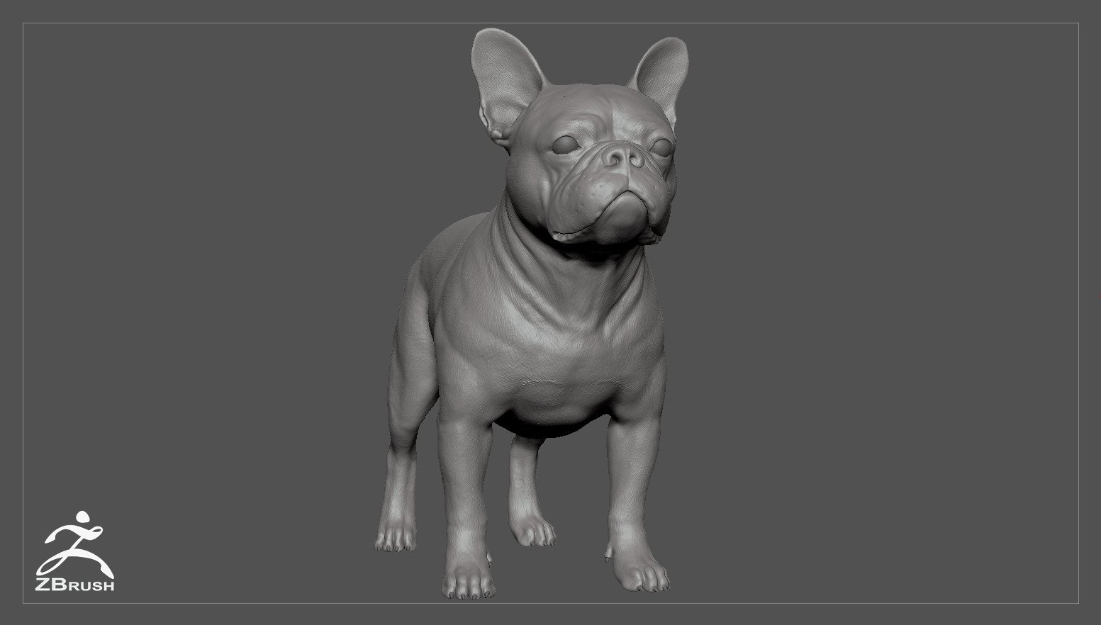 Frenchbulldog by alexlashko zbrush 02
