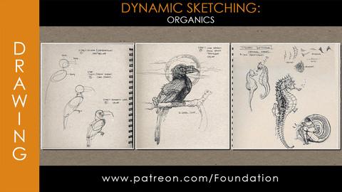 Foundation Art Group - Dynamic Sketching: Organics
