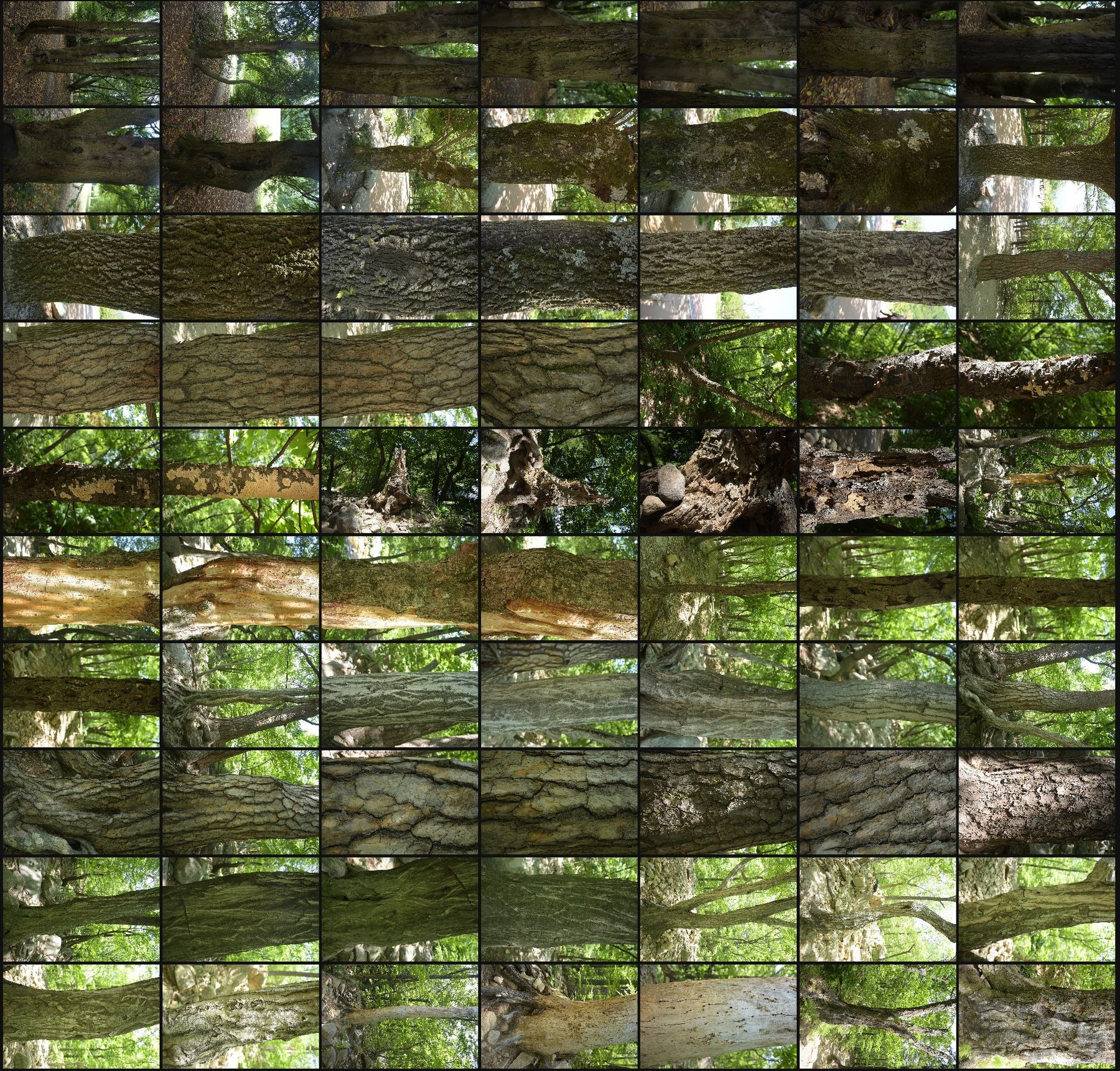 Texture reference pack tree barks volume7 1