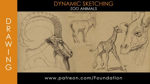 Foundation Art Group - Dynamic Sketching: Zoo Animals