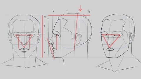Headconstruction tutorial