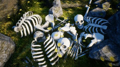 Skulls and Bones Pack