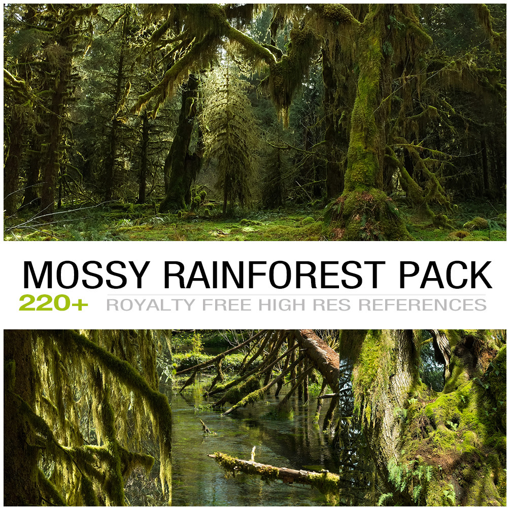 Mossyrainforest cover