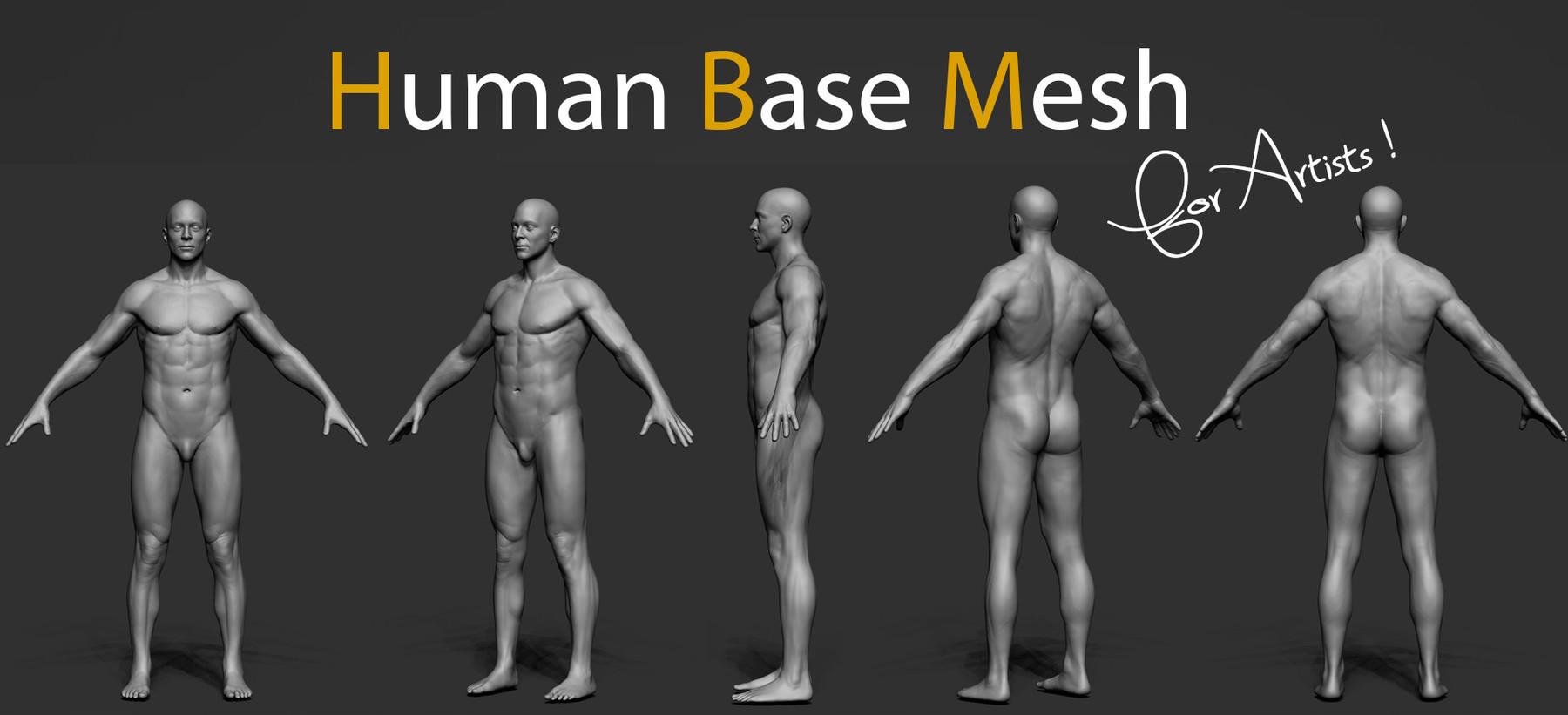 Human bm img4