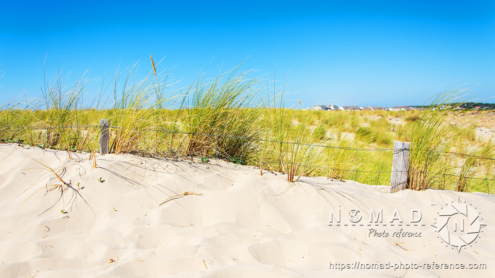 Psd photo reference pack sand dunes 9