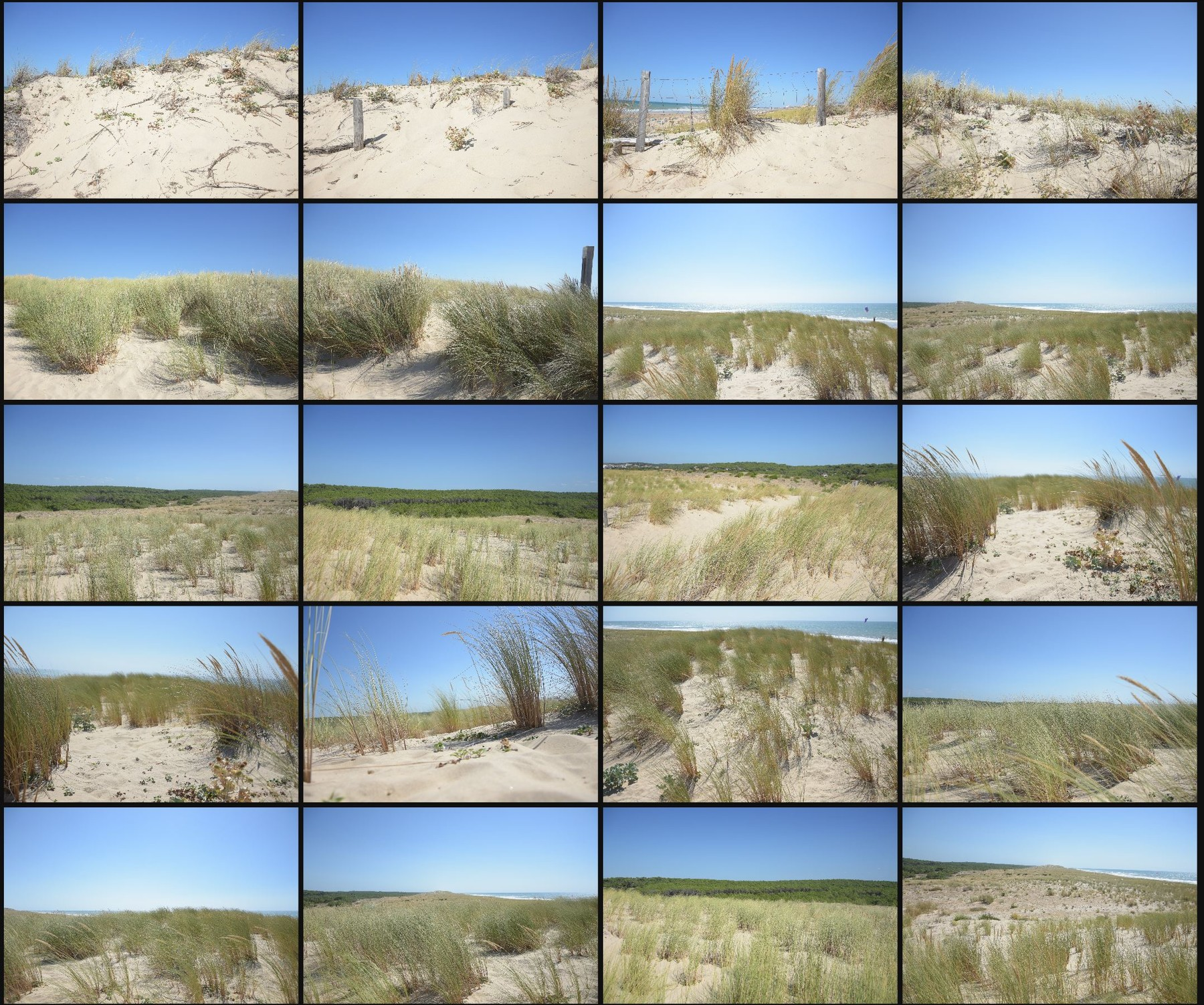 Psd photo reference pack sand dunes 13