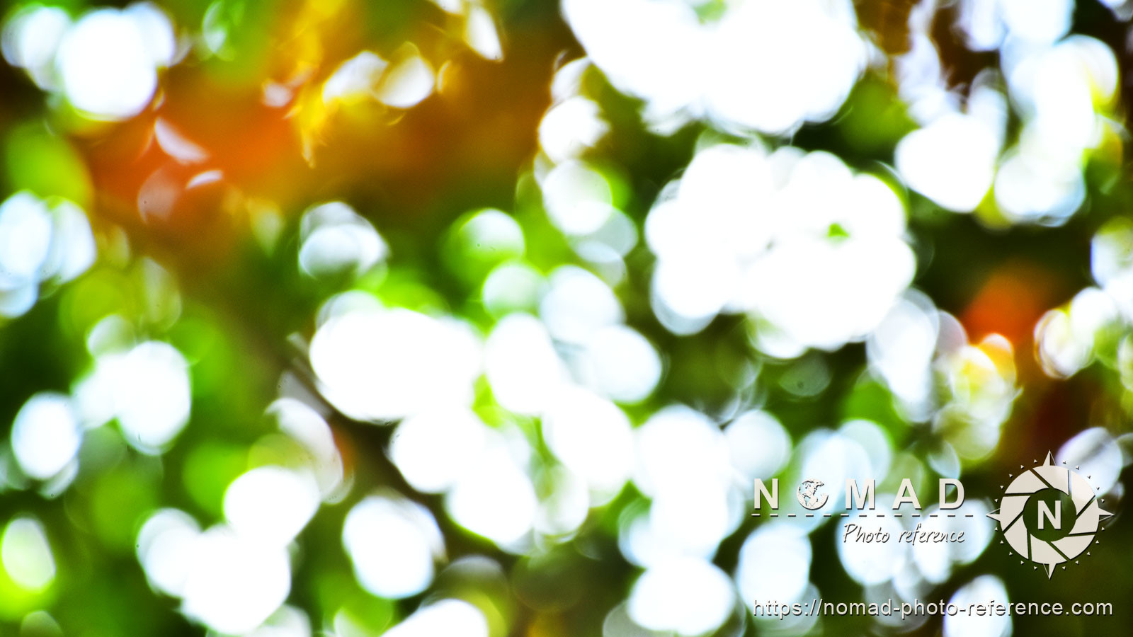 Texture pack abstract bokeh volume 1 nature 06