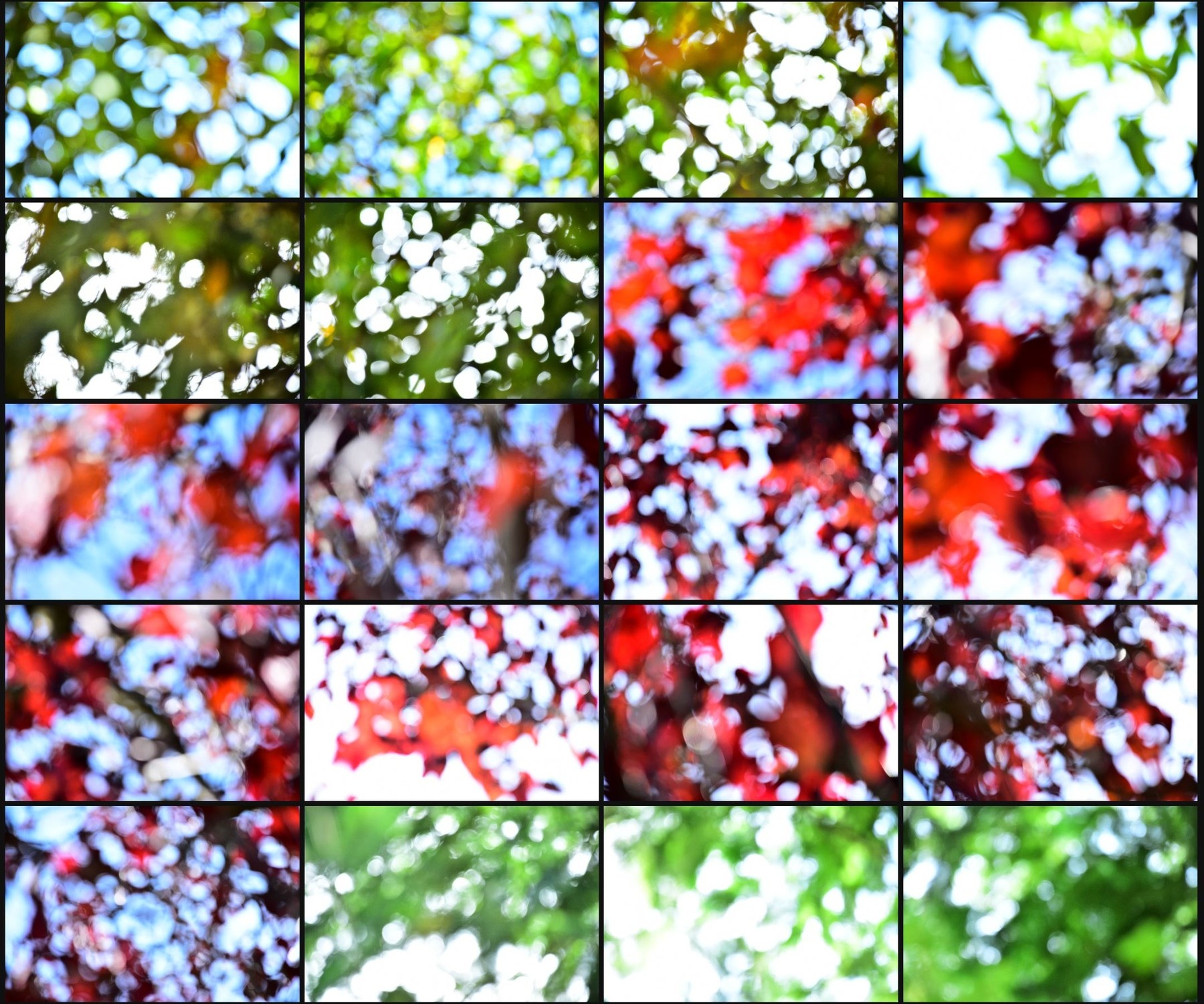 Texture pack abstract bokeh volume 1 nature 08