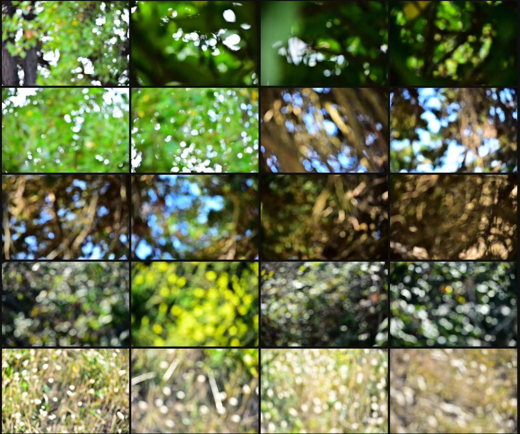 Texture pack abstract bokeh volume 1 nature 12