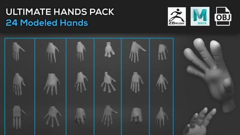 Hands Assets Bundle