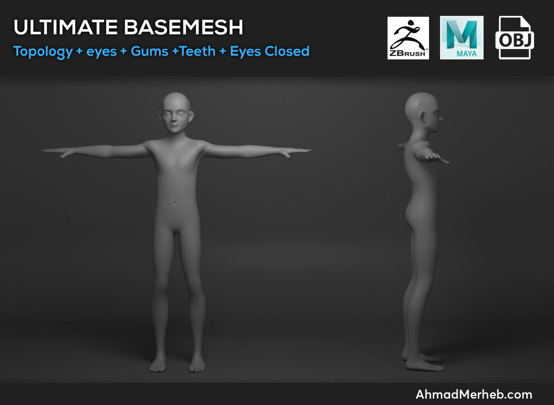 Basemesh2