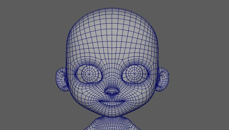 Facetopology