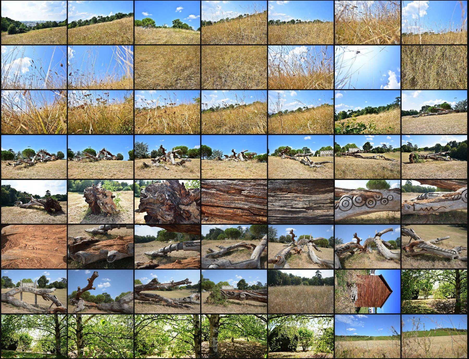Photo reference pack country side volume2 06