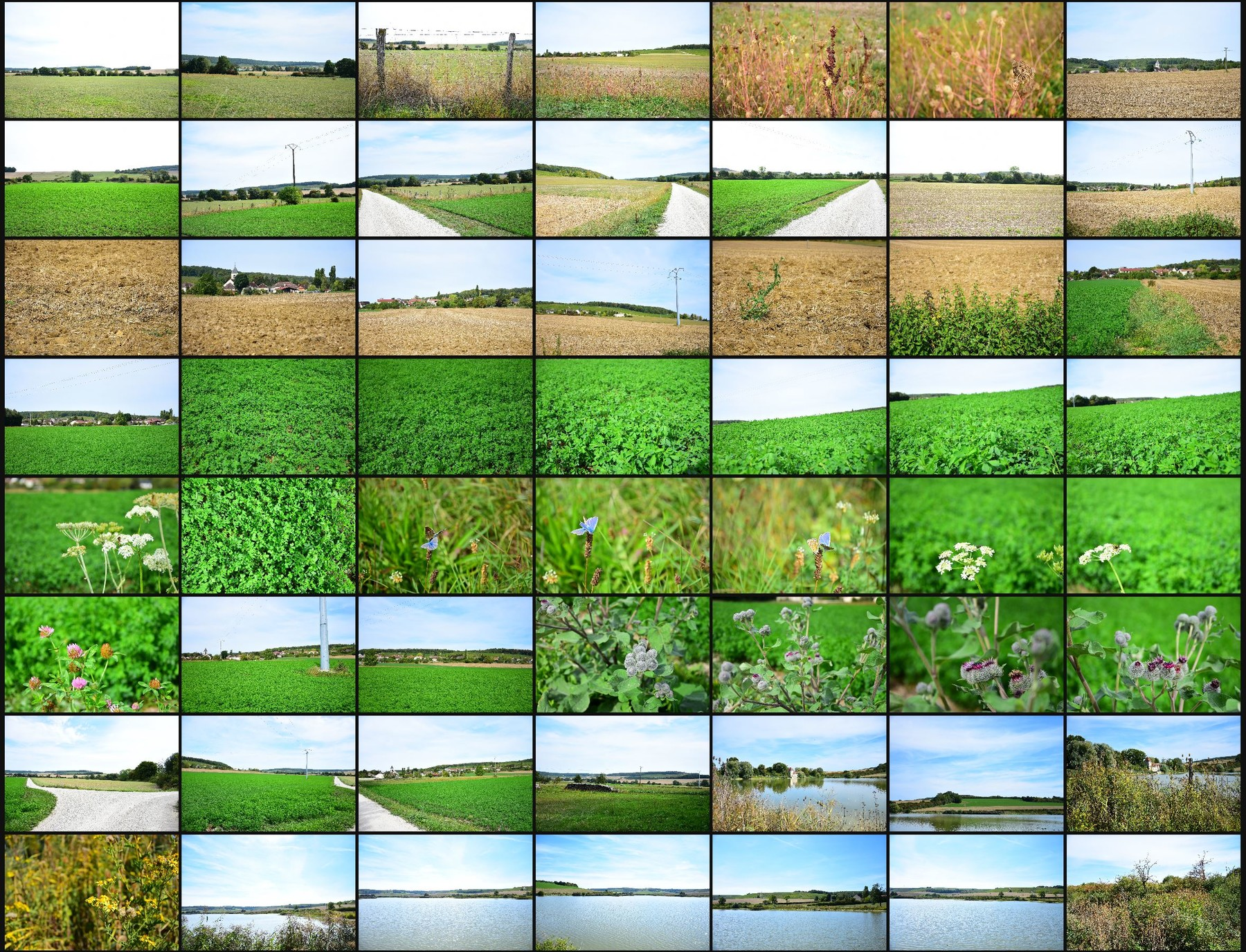 Photo reference pack country side volume2 08