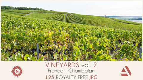 Photo reference pack vineyards volume2 03