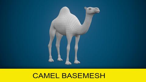 Camel Basemesh
