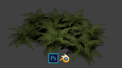 Fern Alpha Created in Blender