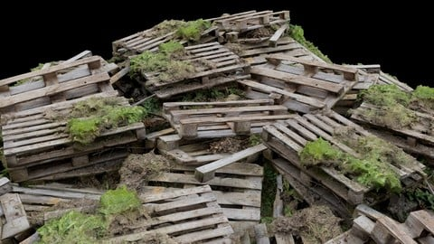 Pile of Wooden Palettes