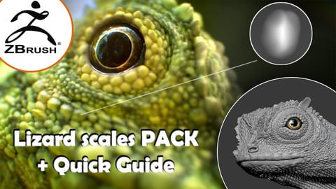 Zbrush - Lizard scales PACK + tutorial