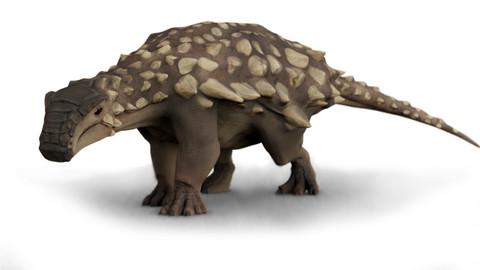Nodosaurus dinosaur - 3D model