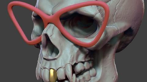 Skull-Sculpted in Zbrush