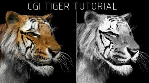 HOW TO MAKE A  3D TIGER
