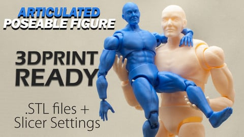 Articulated Poseable Male Figure - 3D Print Ready