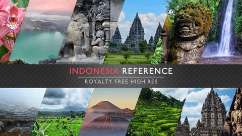 REFERENCE PACK - INDONESIA