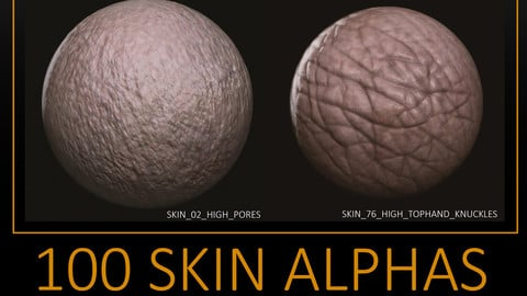 100 Skin Pack and Brushes