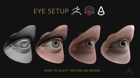 Eye Setup ( for realtime and high render)