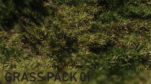 3D Grass Pack 01