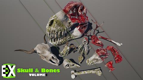 UE4 Skull And Bones Vol.1