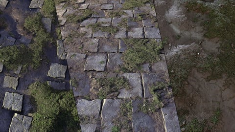 Unkempt Flagstones with Mud and Grass - Customizable Material