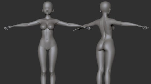 Anime Girl Base mesh with Highpoly
