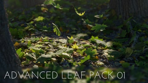 Advanced 3D Leaf Pack
