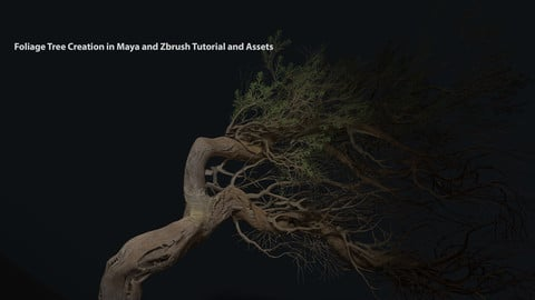 Foliage Tree Creation in Maya and Zbrush Tutorial and Assets